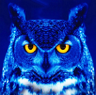 dunniteowl, author of The WoT Welcome Package